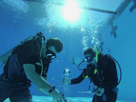 News Around the Lab   Coastal and Marine Laboratory