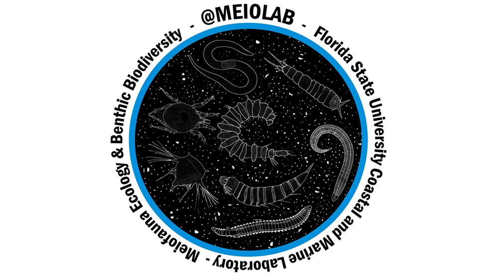 design1-MEiolab for website banner.jpg